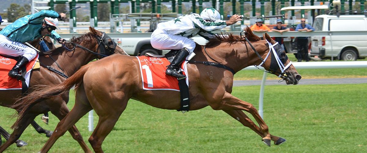 post1 1 - 5 vinkkiä hevosurheilu vedonlyöntiin verkossa