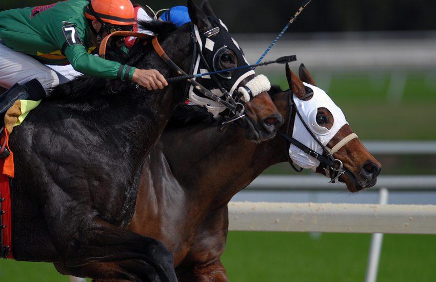 post1 feat 850x550 - 5 vinkkiä hevosurheilu vedonlyöntiin verkossa