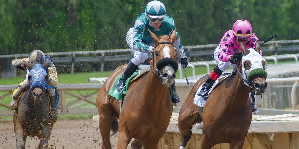 post3 1 - 5 parasta hevoskilpailutapahtumaa, joista lyödä vetoa tänä vuonna