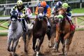 post3 feat 120x80 - 5 parasta hevoskilpailutapahtumaa, joista lyödä vetoa tänä vuonna